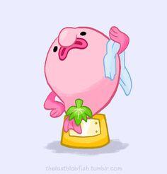 Blobby the Blobfish