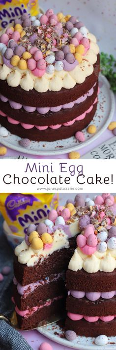 A Three-Layer Mini Egg Chocolate Cake with Pastel Vanilla Buttercream Frosting and Mini Eggs! A Three-Layer Mini Egg Chocolate Cake with Pastel Vanilla Buttercream Frosting and Mini Eggs! Baking Recipes, Cake Recipes, Baking Ideas, Chocolate Easter Cake, Janes Patisserie, Cupcake Cakes, Cupcakes, Just Cakes, Big Cakes
