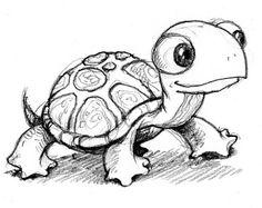 Turtle drawing