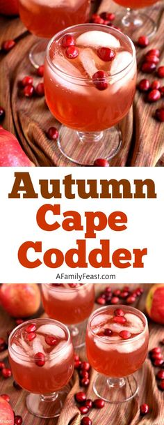 Our Autumn Cape Codder a classic cocktail updated with Fall flavors! Cranberry juice, vodka, apple cider, and apple liqueur plus fresh cranberries for garnish! (So good!)