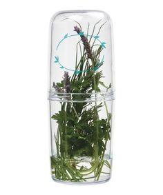 This Herb Saver is perfect! #zulilyfinds