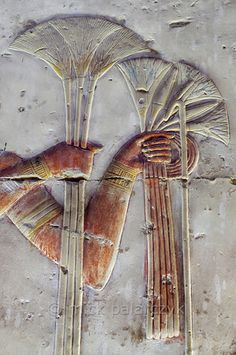 'Papyrus and lotus flowers at Abydos'.    In this relief detail we see pharaoh Seti I