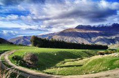Wer sich in Neuseeland nicht lebendig fühlt, ist tot! #Neuseeland #Nature
