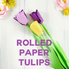 Make a pretty paper tulip with this rolled pattern designed from the shape of real tulip petals and leaves. Free SVG cut files included.