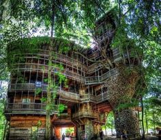 Horace Burgess (in Tennessee) built a tree house, with a whopping 1,000 square meters (nearly 11,000 square feet) and standing 90 feet tall! It took fifteen years . The cabin was built with recycled materials. Interesting fact: the purchase of nails (258,000 total) would have been $ 12,000! In this house you can find a spiral staircase, a basketball court and many balconies. It is open to the public.