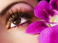 For shaping services with tweezing and waxing of the brow remove unwanted hair for perfect eyebrow shapes visit on our site.