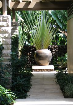 #Luxury#Homes#Outdoors#Pools#Spas#Interiors#