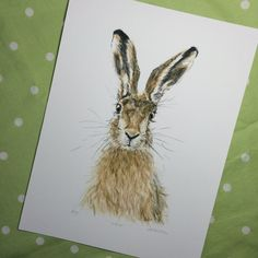 Limited edition Hare Giclee Print of an original watercolour painting by BearsGetCrafty on Etsy.