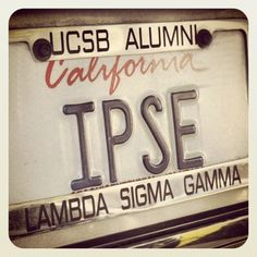 IPSE! - lambda sigma gamma  #lambdasigmagamma  #ipse