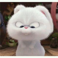 Cute Bunny Cartoon, Cute Cartoon Pictures, Cartoon Pics, Cute Cartoon Wallpapers, Baby Animals Super Cute, Cute Funny Animals, Cute Cats, Rabbit Wallpaper, Bear Wallpaper