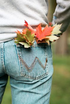 This pin is from my 'Autumn Leaves' board