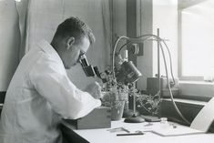 Image result for scientist looking through microscope vintage