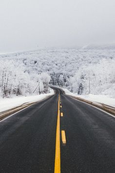 Scootin' in a winter wonderland. #roads #roadtrip