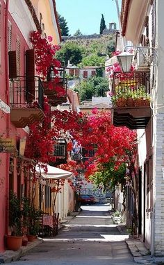 Picturesque alleys in Nafplio, Peloponnese / by nhillgarth on tBoH