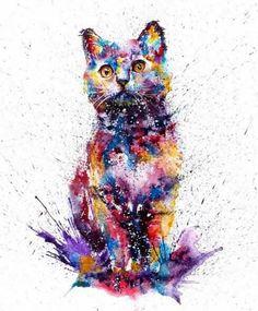 Gatos dibujo agudas- art