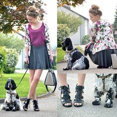 Willi Dog, Otto.De Cardigan, H&M Bag, Tk Maxx Skirt