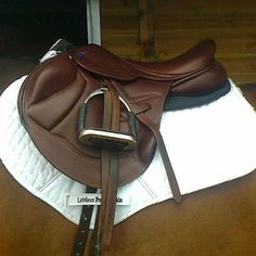 Beautiful saddle! Not sure what kind...