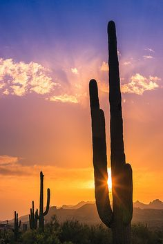 Sunset in Lost Dutchman State Park - Arizona