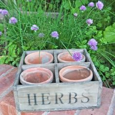 Love this idea! Herb Planters, Beautiful Gardens, Stepping Stones, Berries, Sweet Home, Outdoor Decor, Patio, Red, Indoor