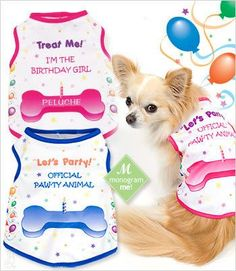 Dog Birthday Shirts - exclusive design by GW Little. Birthday Girl Dog and Birthday Boy Dog tank style with vivid color balloons, confetti and trim lets the world know whose special day it is.