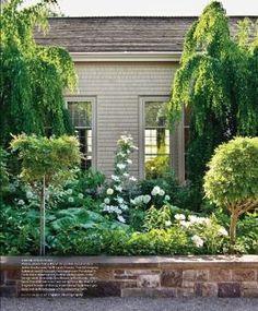 martha stewart's white garden by k-beans