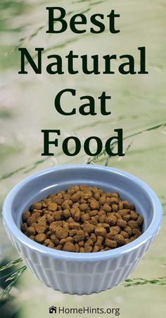 New study reveals the healthiest, vet-recommended, premium cat food brands. The … New study reveals the healthiest, vet-recommended, premium cat food brands. The formulas include high-quality dry and wet varieties. Healthy Cat Food, Best Cat Food, Dry Cat Food, Pet Food, Cat Nutrition, Proper Nutrition, Homemade Cat Food, Cat Food Brands, Dog Food Recipes