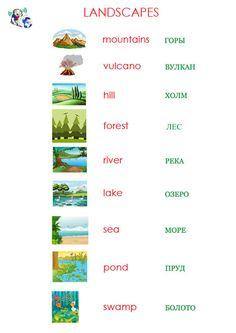 Landscapes 1
