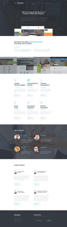 Website Theme , Develox