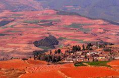 Redland, chinakunming.travel #Yunnan #Redland
