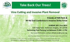 Take Back Our Trees Vine Cutting and Invasive Plant Removal   Friends of FDR Park &  NY-NJ Trail Conference's Invasive Strike Force Sunday, September 21, 2014  Swimming Pool Parking Lot 9-1  Wear long pants & leather gloves Bring loppers, lunch, water, and friends   For more information, contact isftrailcrew@nynjtc.org