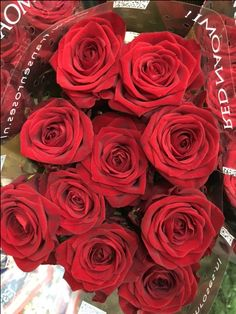 Sold in bunches of 10 stems from the Flowermonger the wholesale floral home delivery service. Red Wedding Flowers, Red Flowers, Red Roses, Beautiful Flowers, Diy Wedding, Stems, Tatoos, Anna, Delivery
