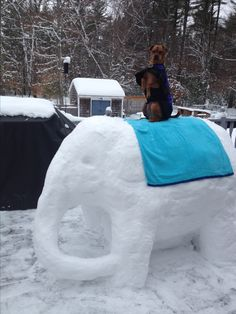 Elephant snow sculpture by Dawn Gould .  This is my dog, Buddy, riding my snow elephant on my back porch!