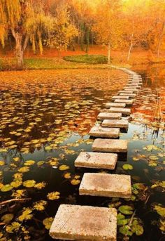 Stepping stones to...? Love.