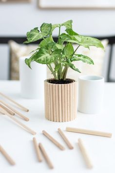 House Plants Decor, Plant Decor, Diy Home Crafts, Diy Home Decor, Vase Deco, Bois Diy, Diy Plant Stand, Diy Projects To Try, Diy Art