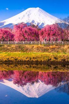 ☆Mt. Fuji 富士山