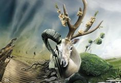 Terra and invention of a wheel by StanOd on DeviantArt Designer Wallpaper, Photo Manipulation, Inventions, Creative Design, Photo Art, Beautiful Places, Deviantart, Wall Art, Animals
