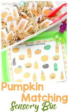 Fun festive fall printable for toddlers and preschoolers!  Pumpkin Matching Sensory Bin Activity