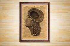 Anatomy poster Human head decor Medical by CrowDictionaryPrints