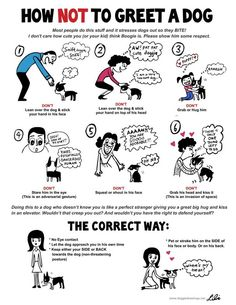 Because this is totally Wallace...Lili Chin - check her website for more super-cute dog behavior posters. http://doggiedrawings.net/post/842176625