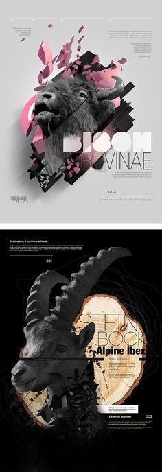 Digital Artworks by Aldo Pulella   Inspiration Grid   Design Inspiration