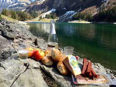 picnic-1325230_1920.jpg (1920×1440)