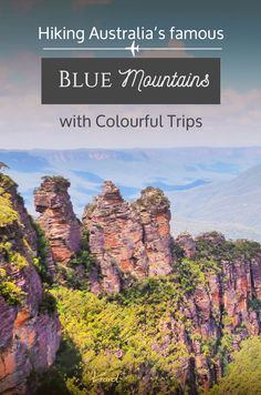 Hiking the Blue Mountains with Colourful Trips in Australia and spotting a Tasmanian devil // Sponsored Camping Spots, Camping Hacks, Camping Gear, Camping Trailers, Camping Essentials, Travel Trailers, Backpacking, Blue Mountains Australia, Australia Travel