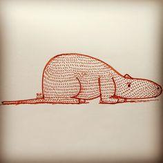 Una especie rara de oso hormiguero - @ericleonhdez | Webstagram