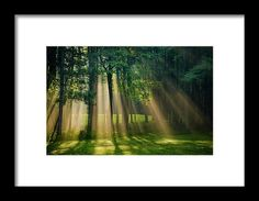 Heavenly Light Sunrise Framed Print by Christina Rollo.  All framed prints are professionally printed, framed, assembled, and shipped within 3 - 4 business days and delivered ready-to-hang on your wall. Choose from multiple print sizes and hundreds of frame and mat options.