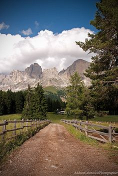 DSC_2071 by andreacatenaccio, via Flickr