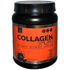 Collagen Sport Ultimate Recovery Complex - great gift for the workout enthusiast or athlete ...Plus our recipe for Protein Fruit Smoothies!