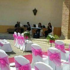 Música para Bodas, Celebraciones, Comuniones, Cocktails en tu ciudad ! en Alicante http://boibu.com/1zh0