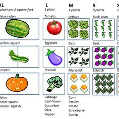 Square foot gardening spacing chart