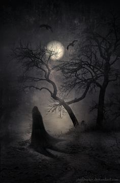 godessofhell:    the—unrequited-dream:    Nocturnal Whisperings by *wyldraven