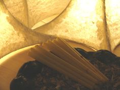 Tàdé Oorkaarsen te koop bij Udaya in Heeze. Er is Kurkuma aan de kaarsen toegevoegd. Dat is een ontstekingsremmend kruid.